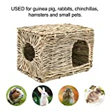 PAWCHIE Grass House for Rabbits, Guinea