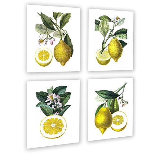 Lemons Kitchen Wall Decor Set of 4 Unframed Yellow Lemon Citrus
