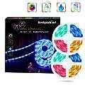 HEDYNSHINE Music LED Strip Lights, 33feet 600 SMD 5050 RGBW Strip Lights with 40Key Remote, Sync to Music Led Strip Lights