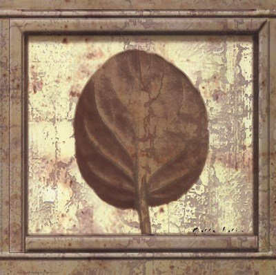 (Classic Leaf Square II by Pierre Fortin - 8x8 Inches - Art Print Poster)