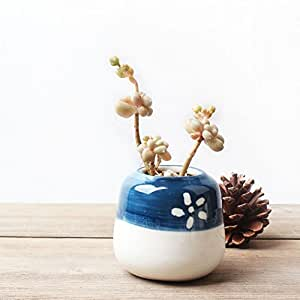 yournelo Creative azul y blanco Jarrón de porcelana flor maceta macetas suculentas, A