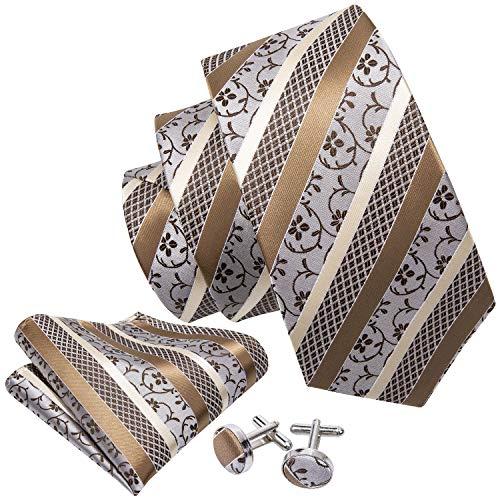 Barry.Wang Fashion Men's Silk Necktie Set Novelty,Khaki,One Size