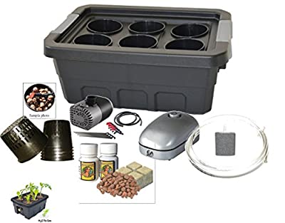 H2OtoGro 04063.75TF DWC Self Watering Hydroponic System No. 04St, 6 Site, 18x13-Inch, Black