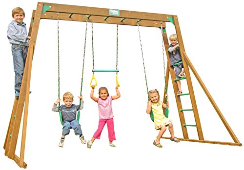 Creative Playthings (Playtime Series) Classic Top Ladder Swing Set Made in the USA (Set Swing Playtime Series)