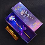 BEFINR-Colorful-Artificial-LED-Light-Flower-Galaxy-Plastic-Luminous-Rose-Unique-Presents-Valentines-Day-Thanksgiving-Mothers-Day-Girls-Birthday-Best-Gifts-for-Her-for-Girlfriend-Wife-Women