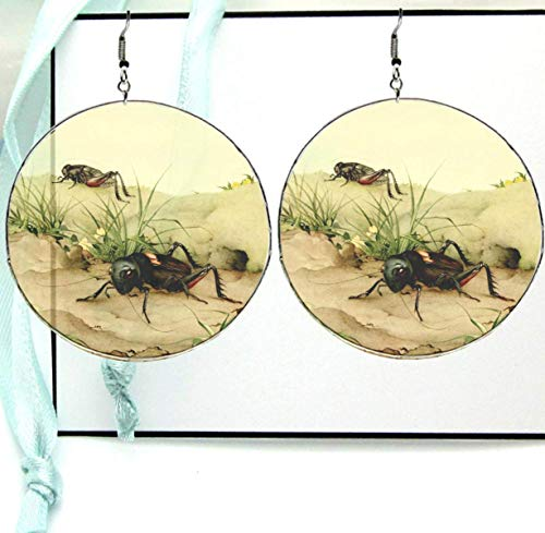 Field Cricket Dangle Drop Hoop Earrings, Large Transparent Resin Photo with Silver Ear Hooks