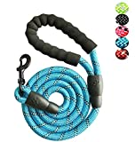 Strong Nylon Dog Leash Rope with Comfortable Padded Handle Training Lead for Medium
