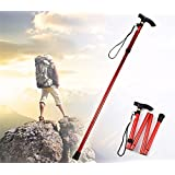 Isafish Folding Trekking Poles Compact and Ultralight Four-Section Collapsible Adjustable Perfect for Hiking Walking Backpacking Mountaineering and Climbing Lightweight Pole Sticks