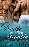 Free eBook - Double The Trouble