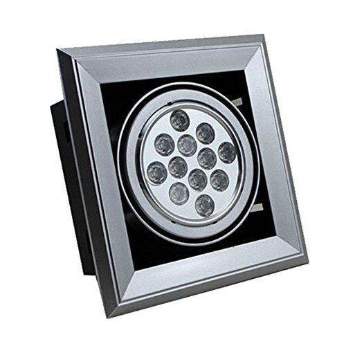 Brightsky 12w Warm White LED Grille Light Spotlight Downlight Square Ceiling Lamp Recessed Bulb Ac 85-265v by Skybright