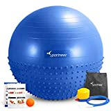 Sportneer Excercise Ball Anti-burst Dual-sided Balance Yoga Ball with Foot Pump,Massage Ball,Workout Guide and Carrying Bag, Blue, 65cm
