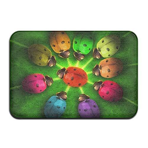 (Andrea Back Doormat Welcome Doormat Rainbow Ladybugs Non Slip Backing Entry Way Doormat 16 x 24 Inch)