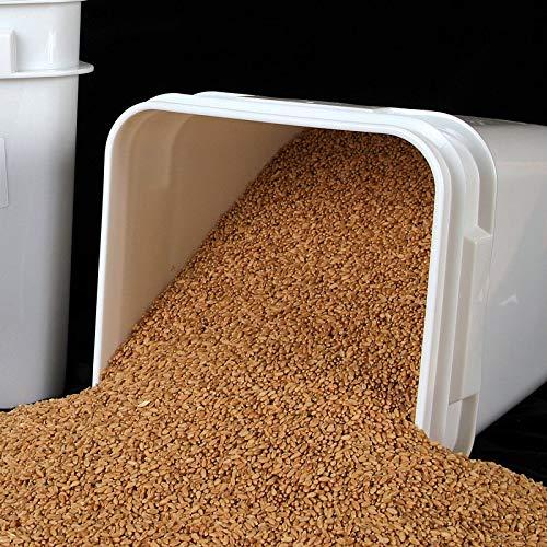 25 lb Prairie Gold Wheat Berries (Wheat Montana Bread)