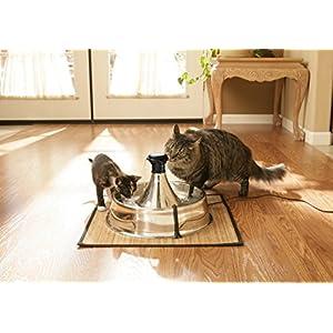 dispensador-para-caes-bebdouro-para-gatos