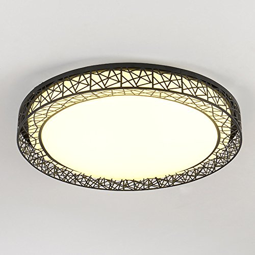 Lilamins LedCeiling LampsCreativeLights for Living Room,Bathroom,Bedroom,and Dining Room