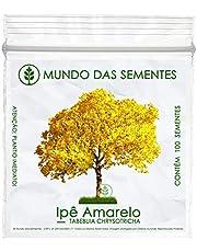 100 Sementes de Ipê Amarelo Dourado - Tabebuia Chrysotricha