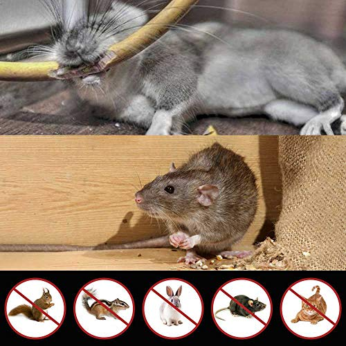 Glaobule Electronic Pest Rodent Repellent Ultrasonic Battery Operated Mouse Squirrel Repellent Ultrasonic Mice Rat Rodents Repeller with LED Strobe Lights Deterrent for Indoor Use