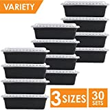 #7: Green Label 30 Meal Prep Containers 3 Sizes, Reusable Portion Control Food Storage with Lids, One Compartment 21 Day Fix, Leak Proof, Disposable Bento Box, Rectangle Variety Pack, Black
