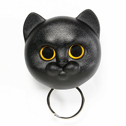 Sansukjai Black Cat, Key Holder, Wall Decor, Wall Hanging, Key Hanger, Key Hooks, Key Organizer,Cat lover, Gift