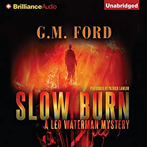 Slow Burn Audiobook