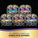 SHEBA Perfect Portions Soft Wet Cat Food Paté in