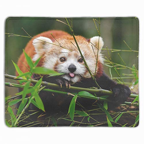 Cute Red Panda Mouse Pad with Stitched Edges, Premium-Textured Mouse Mat Pad, Non-Slip Rubber Base Mousepad for Laptop, Computer & PC, 11.8-inch by 9.85-inch, Multicolor