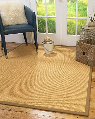 Natural Area Rugs 100 Natural Fiber Handmade Davlin, Tan Sisal Rug, 12 x 18 Doe Border
