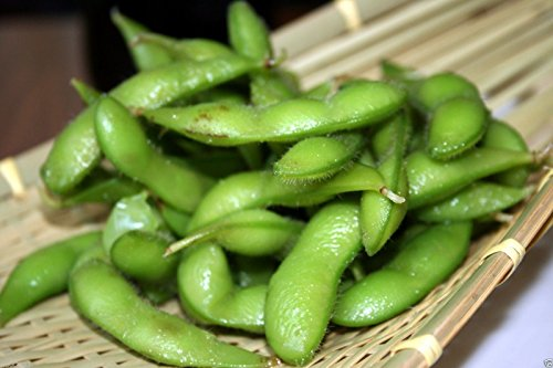 Bean Seeds, Edamame, Edible soybean ,25 Organic NON-GMO untreated Seed by wbut2023