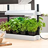 SunBlaster SL1600199 Micro Grow Light Garden, White