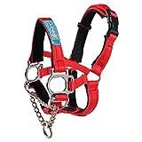 Big Dog Styles Head Collar (2, Red)