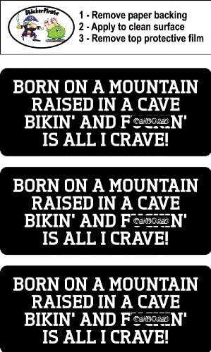 Biker Helmet Sticker BS 693 Born On A Mountain Raised In A Cave  Hard Hat