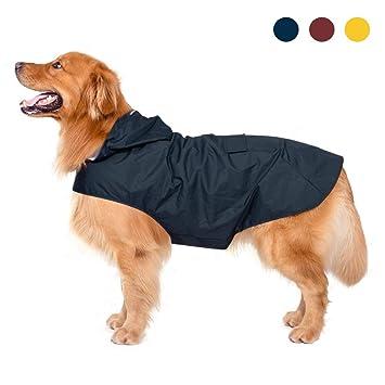 cappotto per cani cartamodello per cani medie