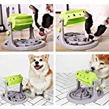 Dog Cat Food Puzzle Toys Slow Feeder FDA