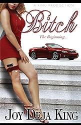 Bitch The Beginning (Bitch Series Book 1)