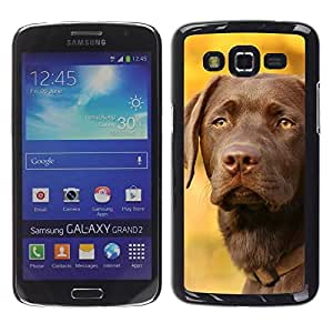 Be Good Phone Accessory // Dura Cáscara cubierta Protectora Caso Carcasa Funda de Protección para Samsung Galaxy Grand 2 SM-G7102 SM-G7105 // Vizsla Dog Breed Canine Autumn Pet