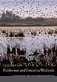 Ecology of Freshwater and Estuarine Wetlands, , 0520247779