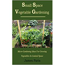 Small Space Vegetable Gardening: Micro-Gardening Ideas For Growing Vegetables In Limited Space