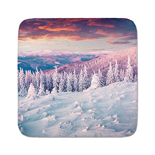 Cozy Seat Protector Pads Cushion Area Rug,Winter Decorations,European Mountain Pine Forest with Sky Colors Overcast Windy Fresh Image,White Pink,Easy to Use on Any Surface ()
