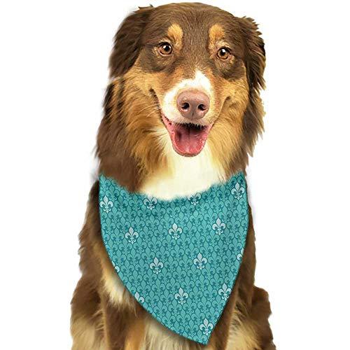 (Pet Dog Scarf Turquoise Fleur De Lis Pattern Ancient Lily Ornate Medieval Interior Monochromic Art W27.5 xL12 Scarf for Small and Medium Dogs and Cats)