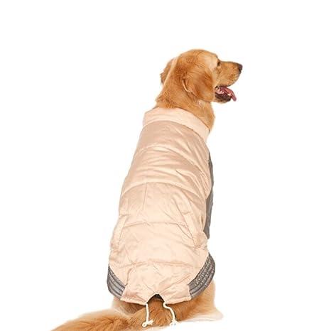 Huijunwenti Ropa para perros grandes, Ropa de otoño e invierno, Ropa para perros,