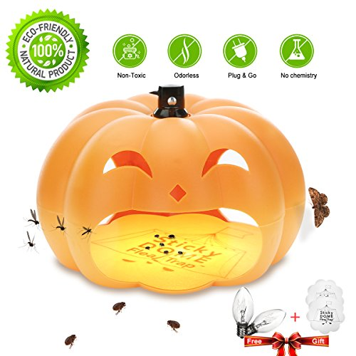 Non Toxic Flea - ZZC High Viscosity Flea Trap With 2 Glue Discs Waterproof Non-toxic No Insecticides Trap Killer Best Pest Control For Home (Orange)