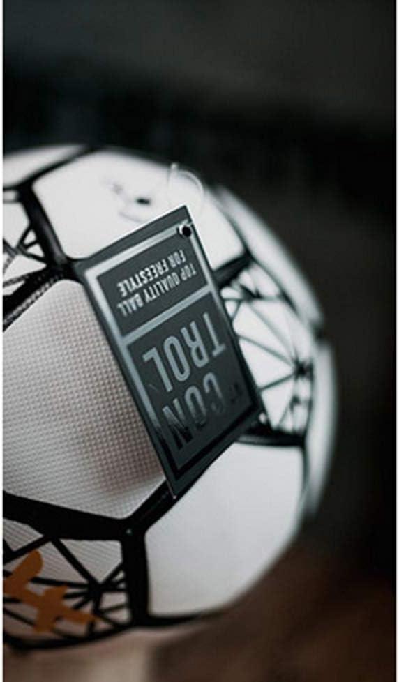 4 Freestyle balón Control Ball V2 talla 4 – La calidad suprema ...