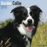 Border Collie Calendar - Just Border Collies Calendar - 2015 Wall calendars - Dog Calendars - Monthly Wall Calendar by Avonside
