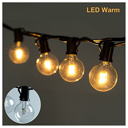 25ft led g40 string lights with 25 led warm globe bulbs ul import it all. Black Bedroom Furniture Sets. Home Design Ideas