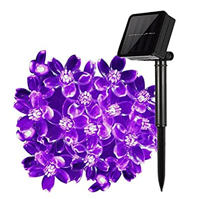 LAFEINA Solar Flower String Lights Outdoor Fairy 50 Led Blossom Lighting for Garden,Patio,Path,Christmas,Indoor,Party-Purple
