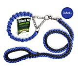 Olivery Heavy Duty Dog Martingale Braided Collar with Solid Hand Crafted Leash (Blue, Small)