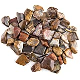 Crystal Allies Materials: 1lb Bulk Tumbled Petrified Wood Fossils from South Africa - Large 1'' Polished Natural Crystals for Reiki Crystal Healing