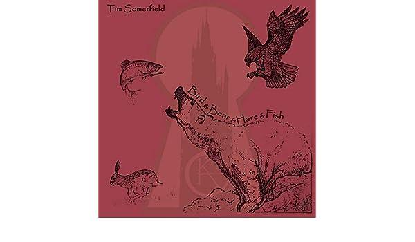 Mordred by Tim Somerfield (Afro Ninja) on Amazon Music ...