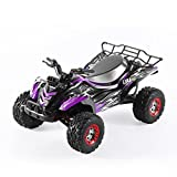 Remote Control Car Rc Car,OCDAY 35KMH 1/12 Scale Electric Remote Control Trucks 4WD High Speed 4x4 Offroad Racing Cars 2.4Ghz Radio System - Purple