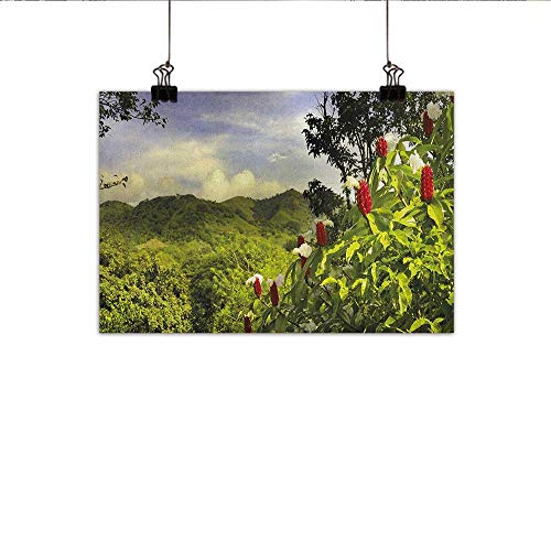 (homehot Forest Art Oil Paintings Rural Scenery Costa Rica Countryside Greenery Tropic Accents Botanical Canvas Prints for Home Decorations 20